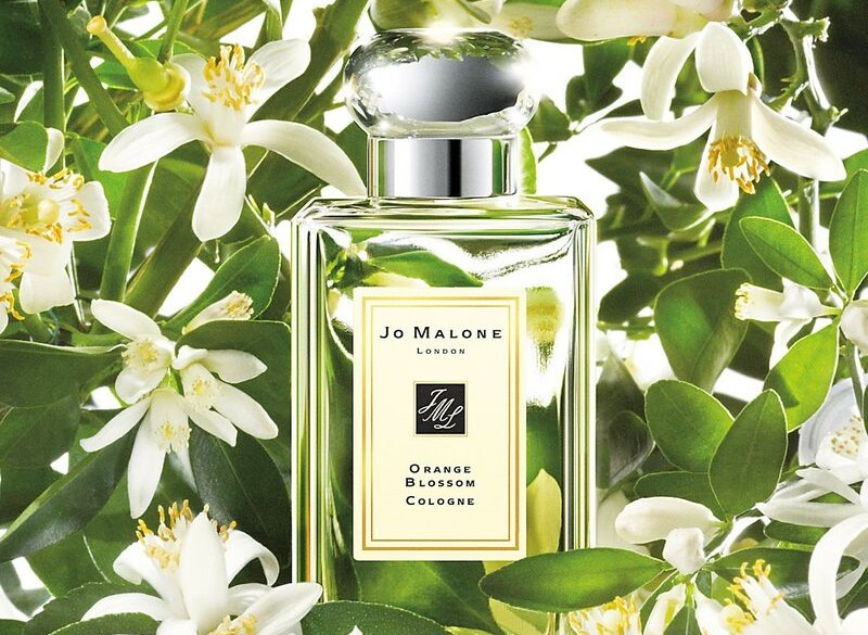 Orange Blossom by Jo Malone London Review 1