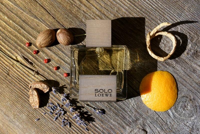 Solo Loewe Cedro by Loewe Review 1