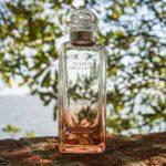 Un Jardin sur la Lagune by Hermès Review 1