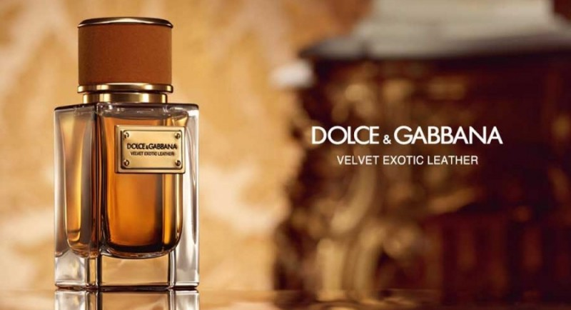 Velvet Exotic Leather by Dolce & Gabbana Review 1